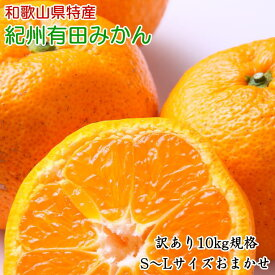 ZD6305_[訳ありご家庭用]紀州有田みかん10kg(S~Lサイズいずれかお届け)