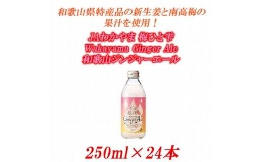U6206_JAわかやま 生姜丸しぼり Wakayama Ginger Ale 和歌山ジンジャーエール 250ml×24本