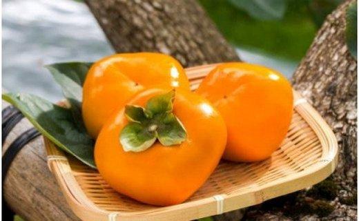 ZD92001_【先行予約】和歌山産たねなし柿(M~2Lサイズおまかせ)約7.5kg