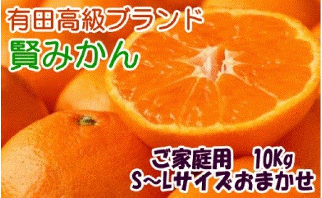 ZD6165_有田ブランド 賢みかん 10kg(S~L)サイズおまかせ ご家庭用【数量限定】