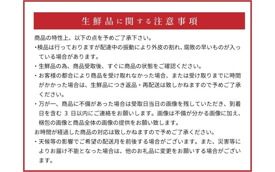 ZE6099_有田のしらぬひ 約4kg~5kg 12玉~18玉【まごころ手選別】