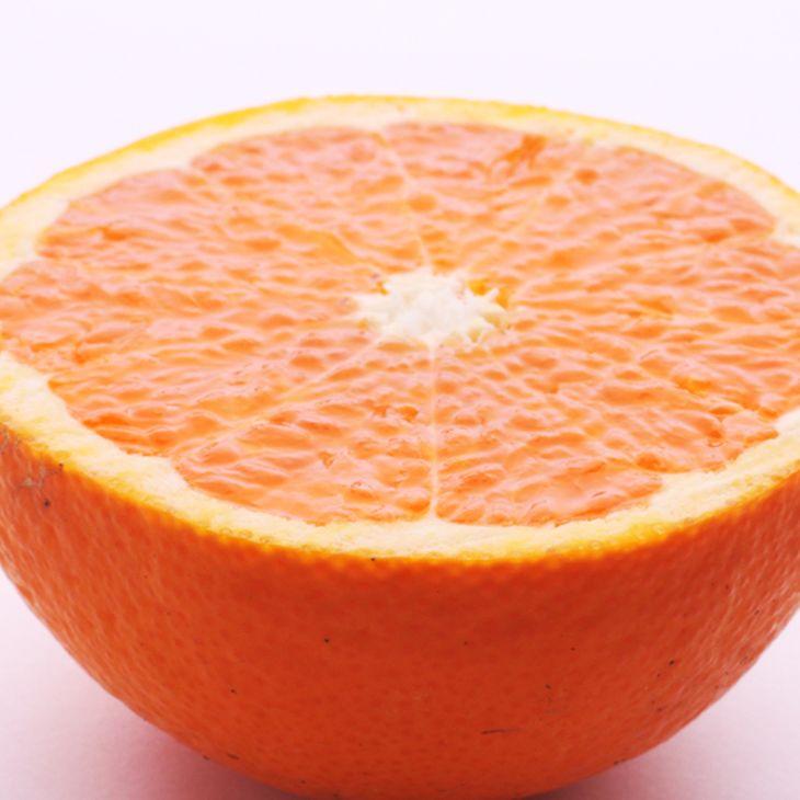 <4月より発送>厳選 きよみオレンジ7.3kg+219g(傷み補償分)【樹上完熟清見タンゴール】 ※2022年4月上旬~4月下旬頃に順次発送予定 ※北海道、沖縄配送不可