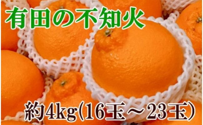 【濃厚】有田の不知火約4kg(16玉〜23玉)