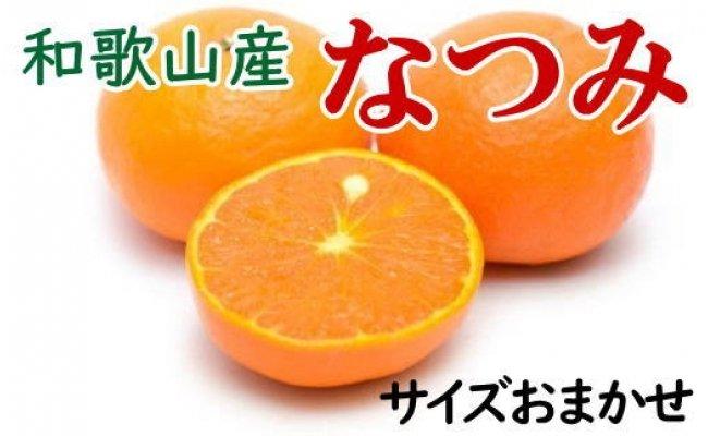 【希少柑橘】和歌山産なつみ約5kg(S〜2Lサイズおまかせ)