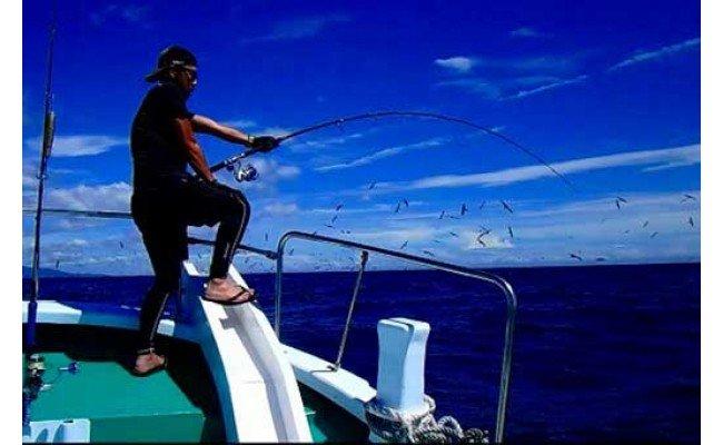 【 アオリイカ・青魚などチャーター】第八大洋丸1日チャーター券(大人6名迄)