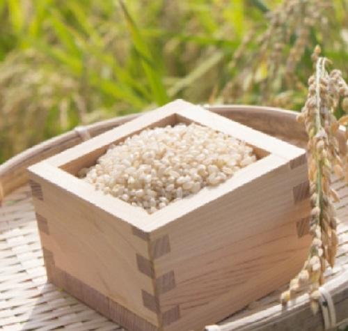 江府町産日野特別栽培米コシヒカリ4kg / お米 コメ 送料無料 精米 4キロ こしひかり JA 0208