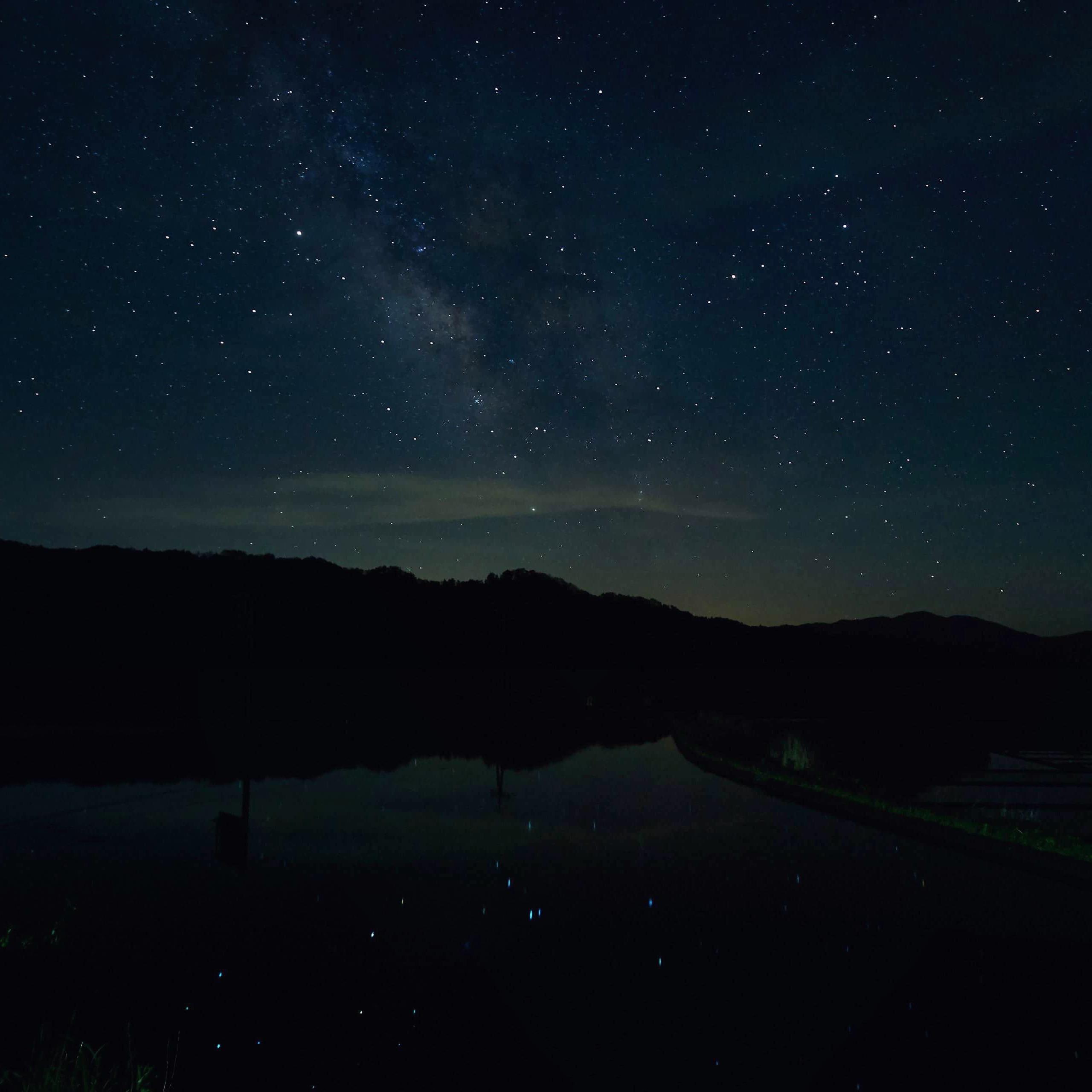 水田に映る星空