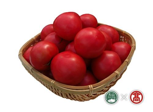 日南町産トマト食べ比べセット(大山ブランド会)高島屋 とまと桃太郎 麗夏 20-f8 0554