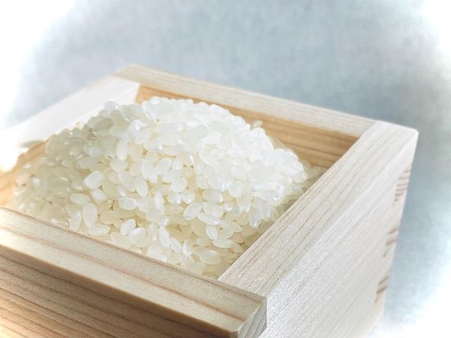 江府町産特別栽培米 天恵米コシヒカリ 10kg 1袋 / 精米 こめ コメ JAアスパル 0598