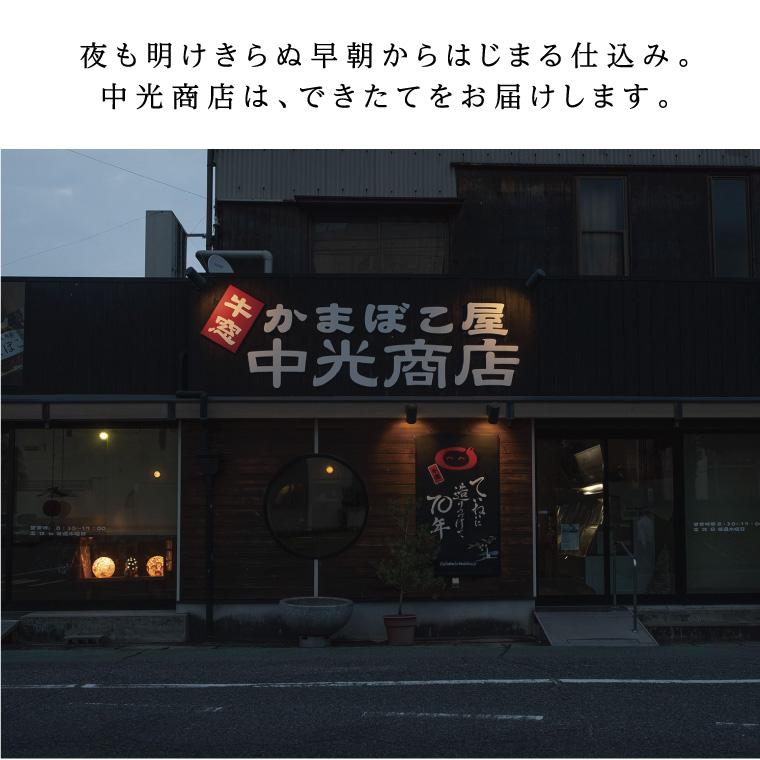 瀬戸内ふるさと創作練り天セットC