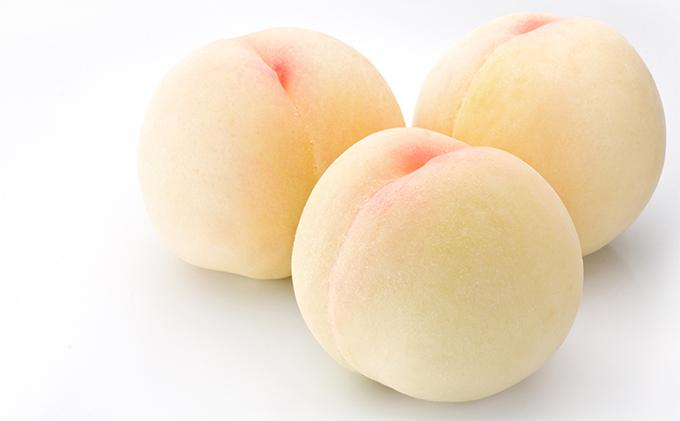 晴れの国おかやまのフルーツ定期便 白桃 2kg(5玉~7玉)シャインマスカット 4房(合計2.8kg以上)