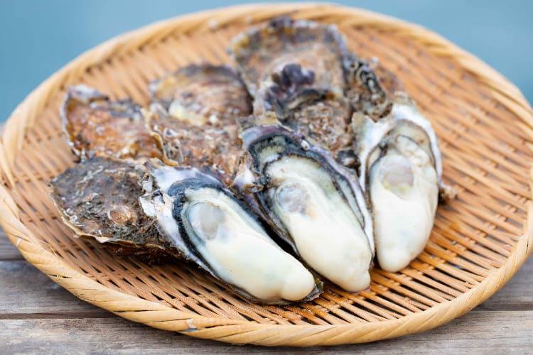 T0008  牡蠣好きに贈る!3か月連続 牡蠣の定期便