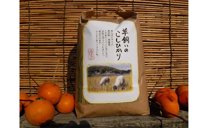 瀬戸内三原 羊飼いのこしひかり(無肥料無農薬米)19kg(7分搗き)
