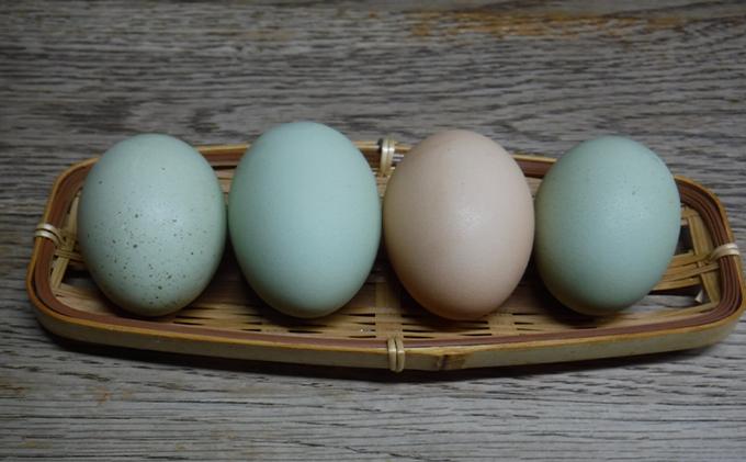 若草有精卵と無農薬こしひかり(玄米2kg)の玉子かけ御飯セット