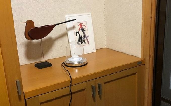 抗ウイルスUVA紫外線大ドーム灯 UVBOX365BD