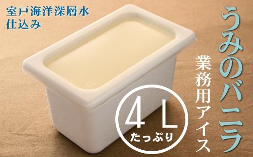 うみのバニラ4L 業務用アイス
