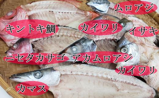 【訳あり】地魚干物セット(約1.5kg)