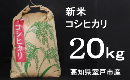 【令和3年産】室戸産新米コシヒカリ20kg