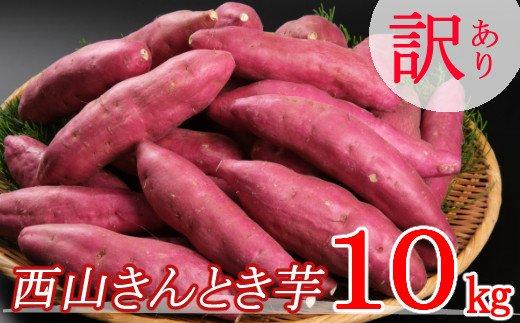【訳あり】西山きんとき芋(さつまいも)10kg<サツマイモ・焼き芋にオススメ>