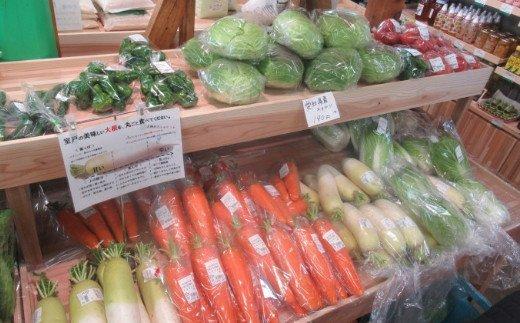 朝どれ野菜10品目【4ヶ月連続定期便】〜新型コロナ支援