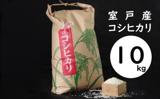 【令和3年産】室戸産新米コシヒカリ10kg