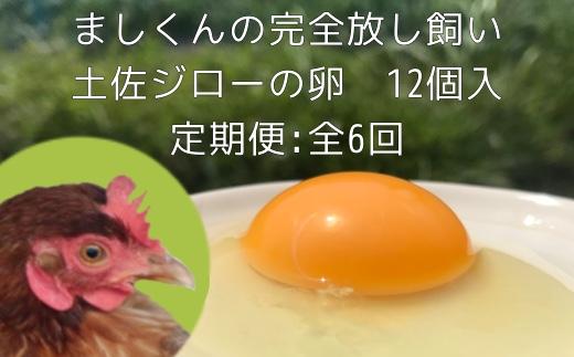 【CT-2】定期便:土佐ジローの卵(12個入り×6回)