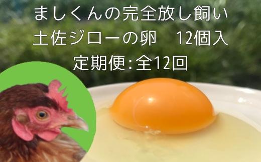 【AT-7】定期便:土佐ジローの卵(12個入り×12回)