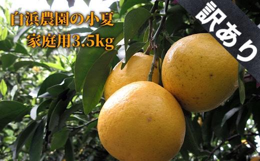 【A-114】訳あり家庭用小夏3.5キロ(白浜農園)