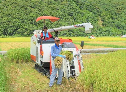 【B-126】土佐清水産コシヒカリ(玄米10㎏)