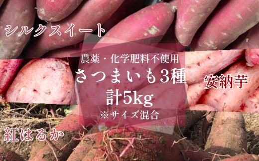 【AE-45】さつまいも3種ミックス5kg(シルクスイート・安納芋・紅はるか)
