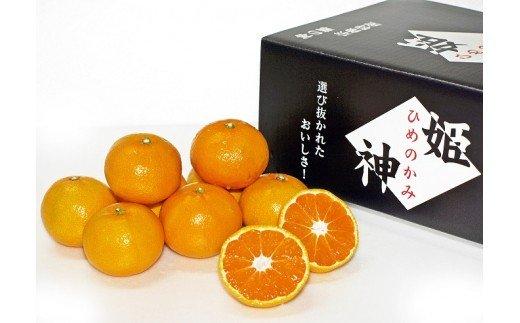 KA0281_旬のミカンをお届け!JAむなかた柑橘ブランド「姫の神」3kg 甘くておいしいみかん【2021年10月中旬〜出荷】