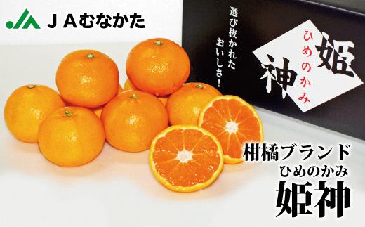 旬のミカンをお届け!JAむなかた柑橘ブランド【姫の神(不知火/しらぬい)】約5kg(2021年3月~4月中お届け)_KA0571