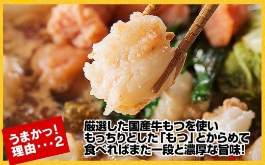 KA0241_ 博多明太もつ鍋(1人前)
