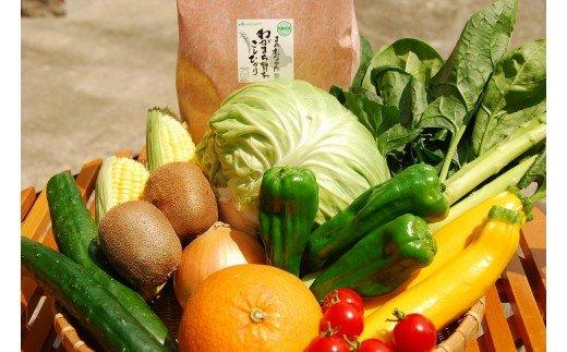 KA0263_【9〜11品】むなかた旬のお任せセット(野菜・フルーツ・お米)