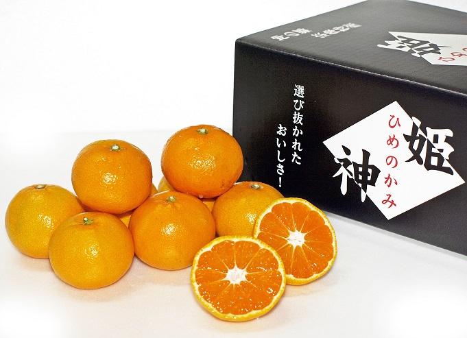KA0280_旬のミカンをお届け!JAむなかた柑橘ブランド「姫の神」5kg 甘くておいしいみかん【2020年10月中旬〜出荷】