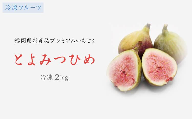 KA0279_【冷凍フルーツ】福岡県特産品プレミアムいちじく「とよみつひめ」冷凍2kg