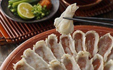 漁協お勧め玄界灘のしまふく炙りセット(4〜5人前)_KA0465