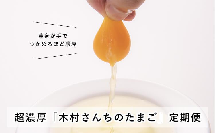 超濃厚「木村さんちのたまご」定期便(月20個×6ケ月)おすすめ調味料つき【後期】
