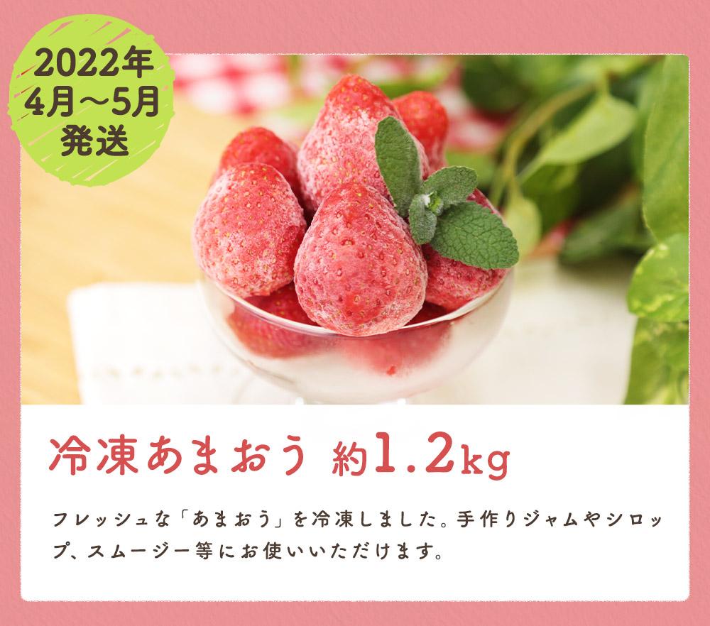 果物定期便B 5回発送 (キウイフルーツ・デコポン・あまおう・冷凍あまおう・すもも) 2021【2022年1月~6月まで計5回お届け】
