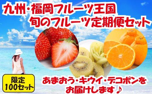 C048.【人気】九州・福岡フルーツ王国.旬のフルーツ定期便Hセット