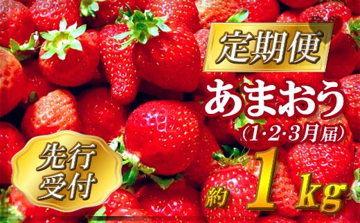 2Z1【先行予約】福岡県産「あまおう」定期便3回お届け (1月・2月・3月)