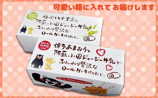 2H3 八女茶ロールケーキと博多あまおうロールケーキセット
