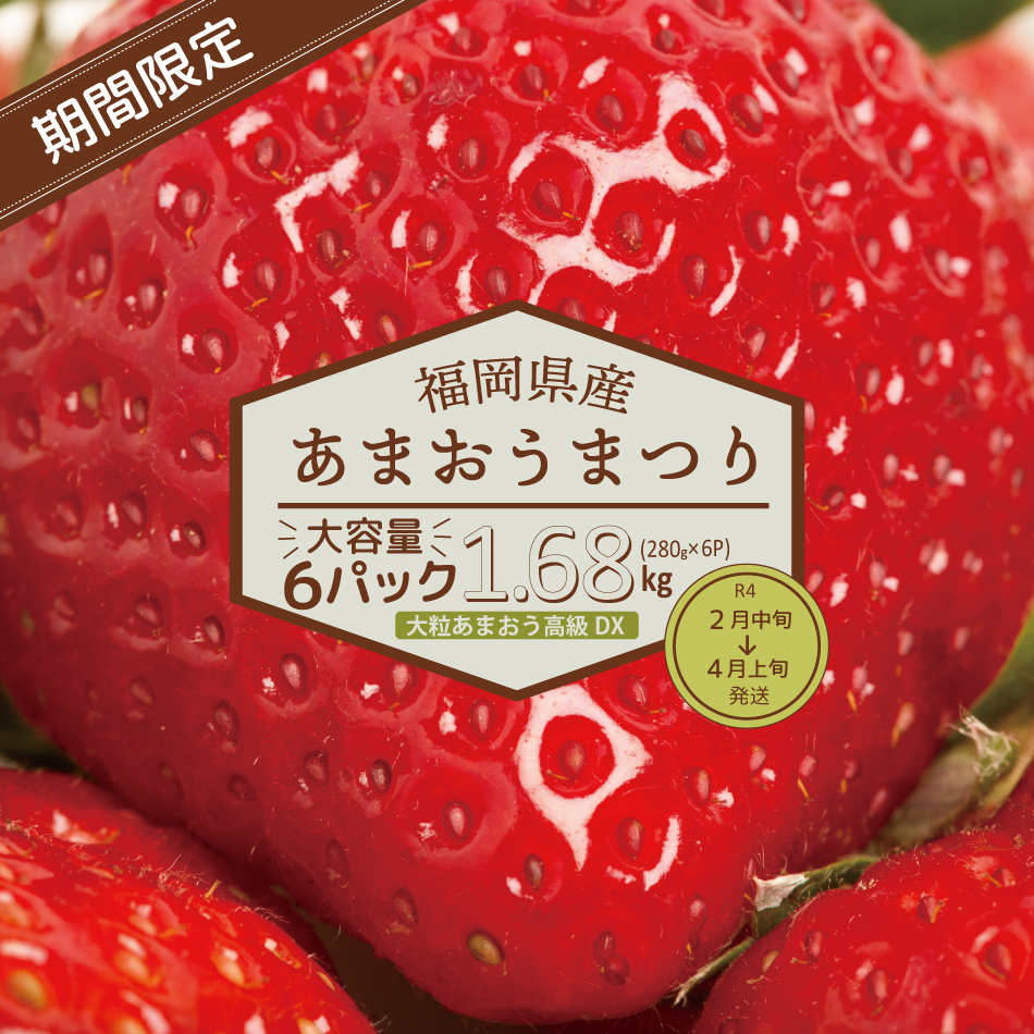 2VB5【福岡県産大粒あまおう】高級DX 1.68kg!(2月中旬~4月上旬発送)
