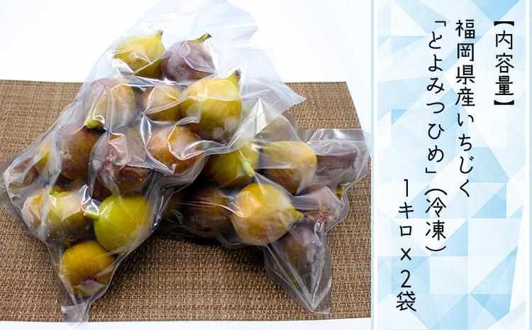 2J8【福岡県産】冷凍とよみつひめ(イチジク) 2kg(1kg×2)