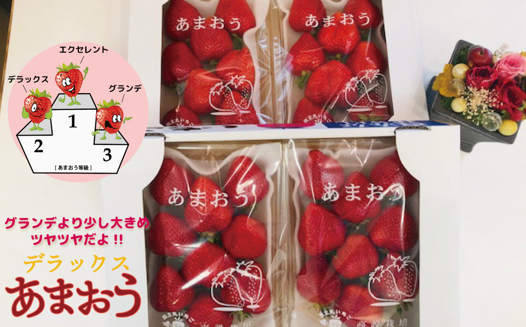 2TB5 【福岡県産大粒あまおう】高級DX 280g×6P(2月中旬~4月上旬発送)