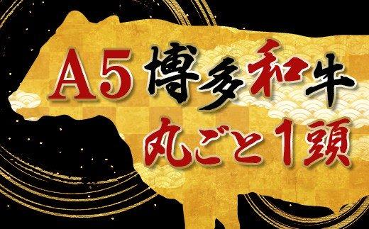 YQ12 !!!丸ごと1頭!!!【A5】博多和牛〜いかがですか?〜(800〜900kg)