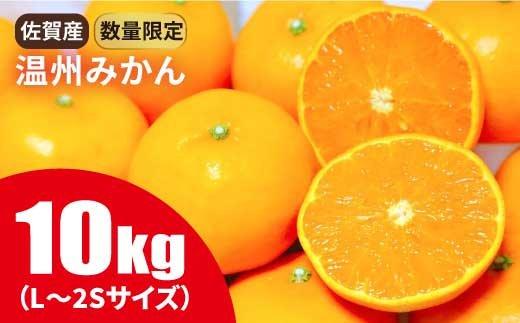 【数量限定】佐賀県産温州みかん 10kg『ちょうどよい甘みと酸味』 [FBT019]