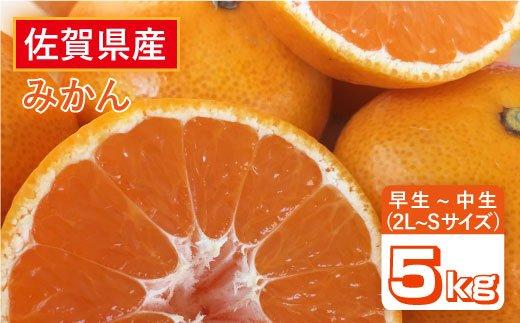 【甘酸っぱい味わい】佐賀県産みかん(早生〜中生)5kg【縁ツなぎ】 [FCC010]