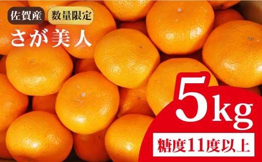 【数量限定】青果のプロもうなずく美味しさ・佐賀県産みかん さが美人 5kg (糖度11度以上 2S〜Lサイズ) [FBT021]