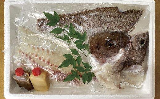R868 片岡水産真鯛セット(小)